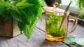 Isırgan Otu Çayının Faydaları ve Kullanımı