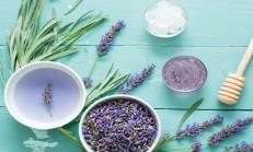 Lavanta Çayının Faydaları ve Kullanımı