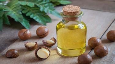 Macadamia Yağının Faydaları ve Kullanımı